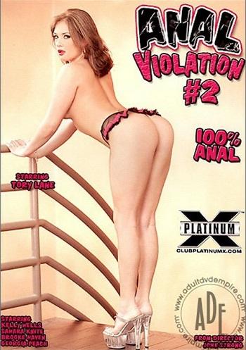 Анальное Насилие 2 / Anal Violation 2 (2006) DVDRip