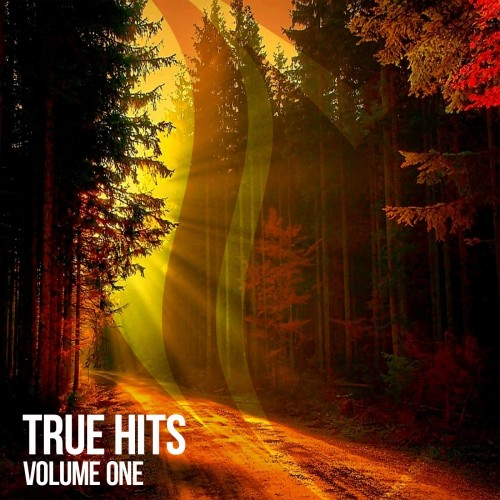 True Hits Vol. 1 (2017)