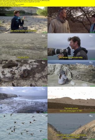 CCTV - Peru Extreme Planet (2014) HDTV 720p x264 AC3 MVGroup
