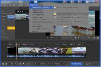 SolveigMM Video Splitter 6.1.1611.25 Business Edition Portable - лучший резчик видео