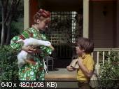 Утка за миллион долларов / The Million Dollar Duck (1971)