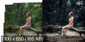 Курс обработки фотографий различной сложности (2017)