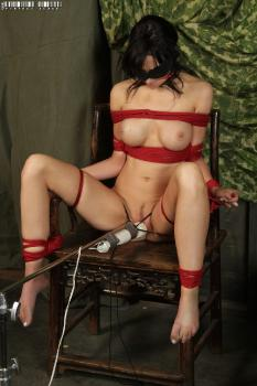 Bdsm Fetish Diana Prince Humiliated
