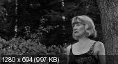 Убийцы медового месяца / The Honeymoon Killers (1969)