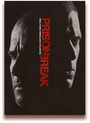 Побег: Продолжение / Prison Break: Sequel [Сезон: 5, Серии: 1-8] (2017) WEB-DL 1080p | FOX