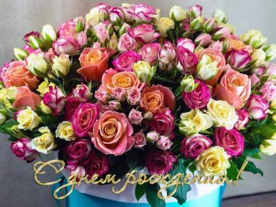 Поздравляем с Днем Рождения Елену (Ленуська) E3c9a1a3a4b137a8ba443ed097a3c6b5