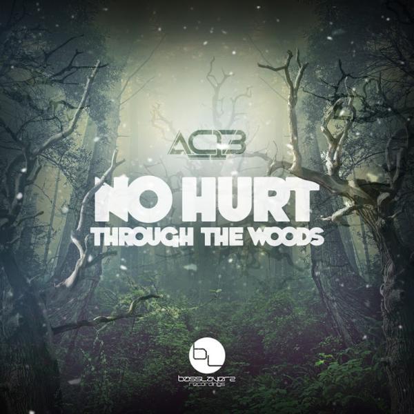 AC13 No Hurt  Through The Woods BLR004  2019