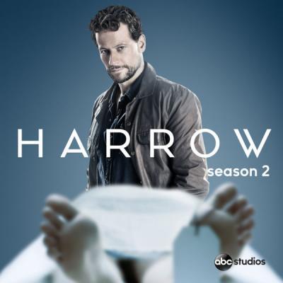 Доктор Хэрроу / Harrow [Сезон: 2] (2019) WEB-DL 1080p | Amedia