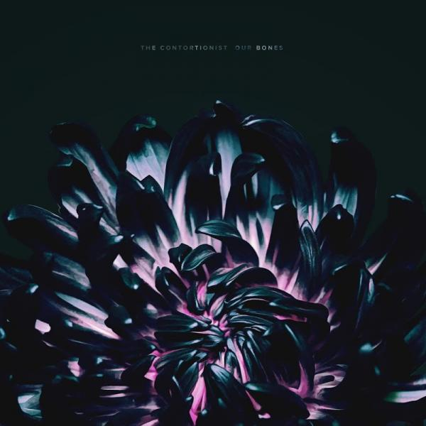 The Contortionist Our Bones 2019
