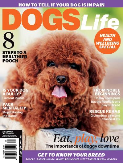 Dogs Life   May June (2017)