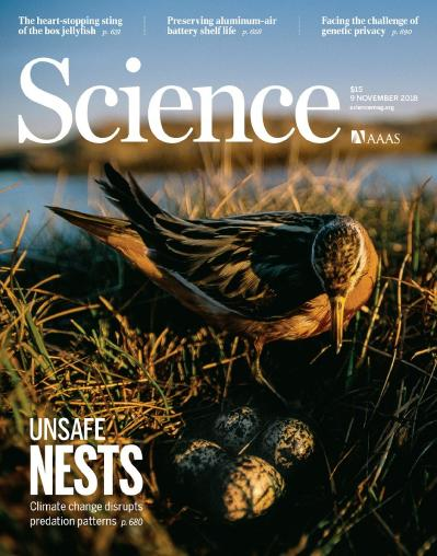 Science   9 November (2018)