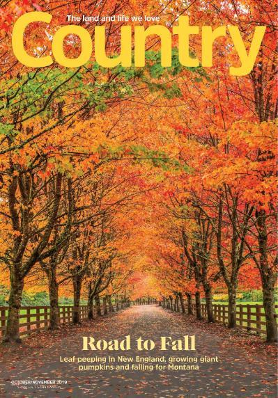 Country - October-November (2019)