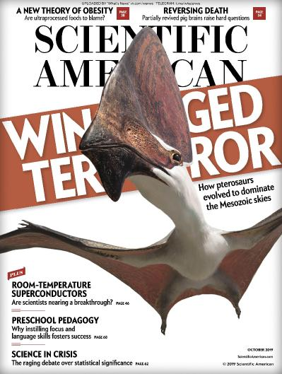 Scientific American - 10 (2019)