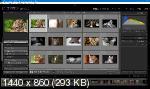 Adobe Lightroom Classic 2020 9.0.0.10